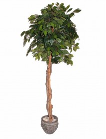 Artificial plant 150cm Ficus B313TA